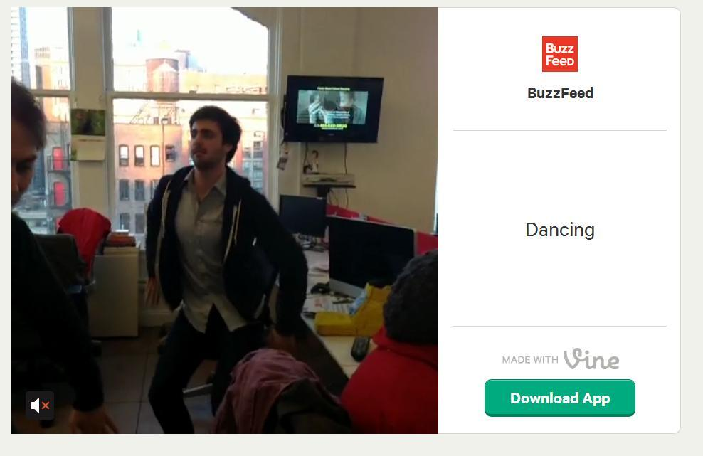 buzz feed on vine